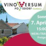 Saisonstart Vino Versum Poysdorf Tourismus